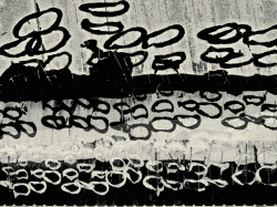 Asemic tomato cages